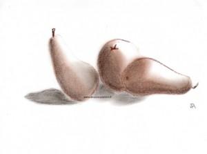dessin au sépia représentant des poires