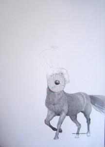 Début d'un dessin d'un Centaure