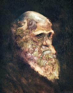 Illustration de David Revoy