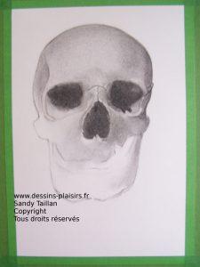 Phase 4 du pas à pas du crâne