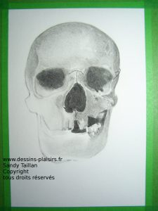 Pahse 5 du dessin du crâne au fusain